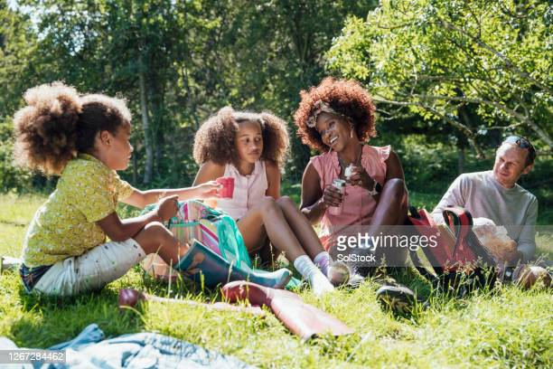family picnic - springtime stock pictures, royalty-free photos & images