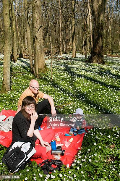 Family picnicing in  forest.