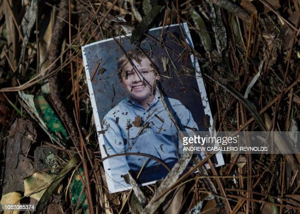TOPSHOT A family picture lies in the grass after being washed out in a storm surge in Port St Joe beach Florida on October 13 three days after...