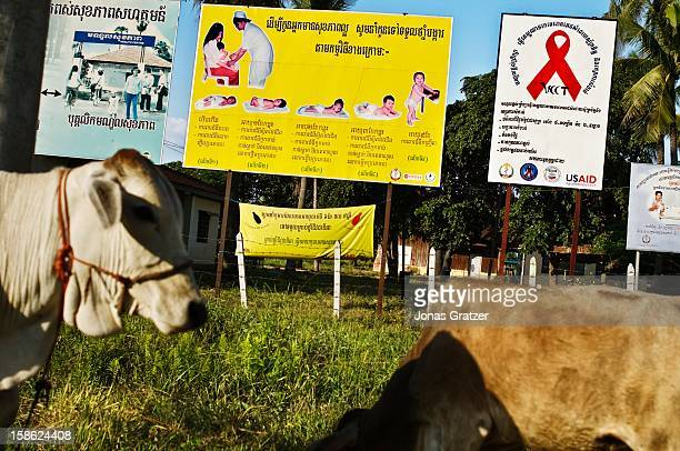 Family planning and AIDS awareness billboards along a country road