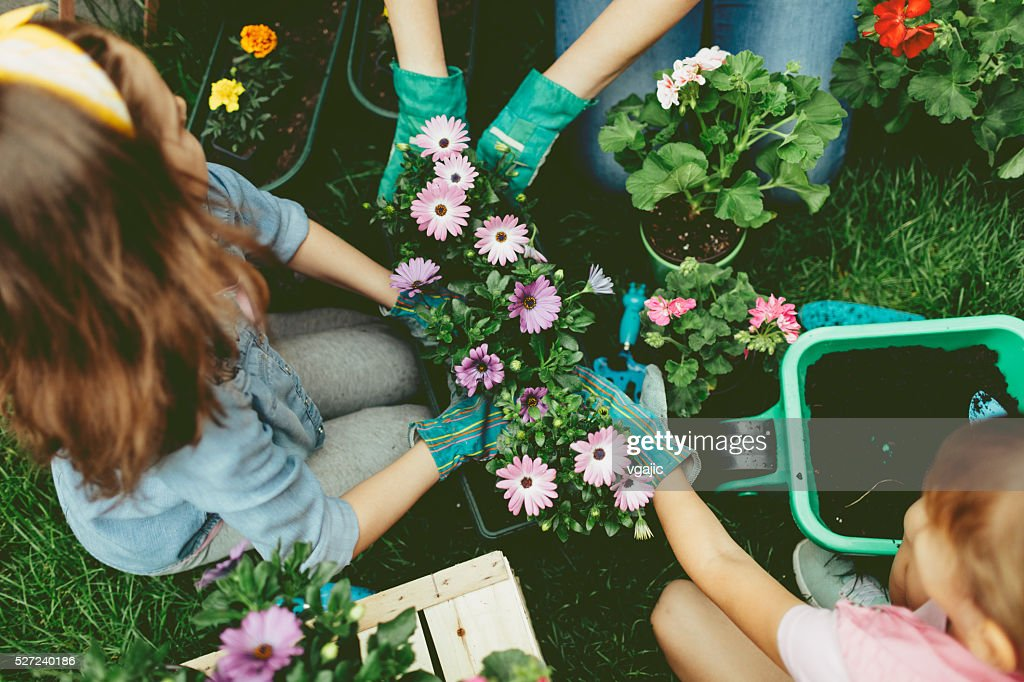 Family Planting Flowers Together. : Stockfoto