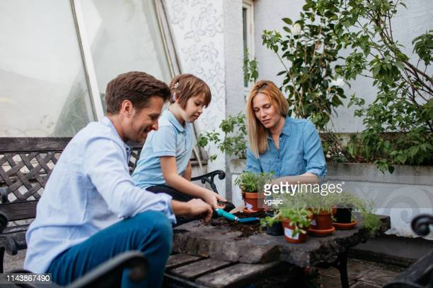 Family Planting Herbs On Their Balcony
