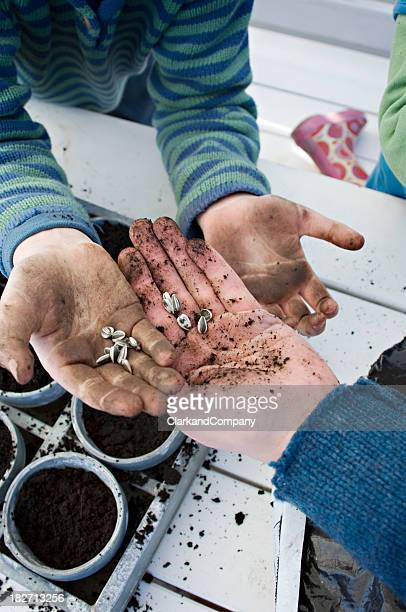 Family Planting Seeds in The Springtime.