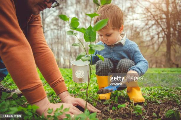 family planting tree on arbor day in springtime - springtime stock pictures, royalty-free photos & images