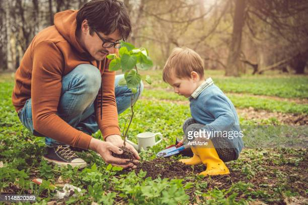 family planting tree on arbor day in springtime - planting stock pictures, royalty-free photos & images