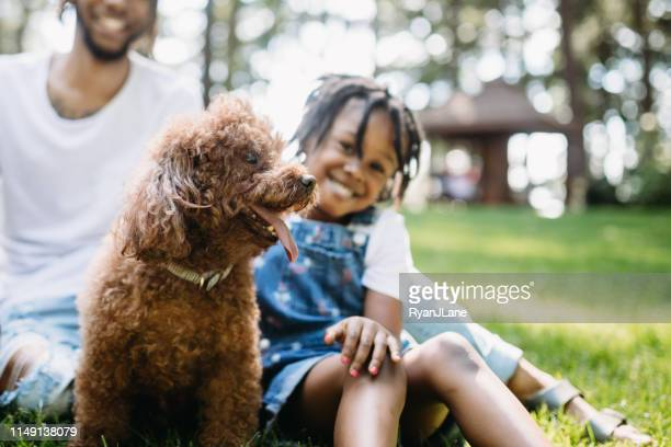 family playing in park with dog - pet adoption stock pictures, royalty-free photos & images