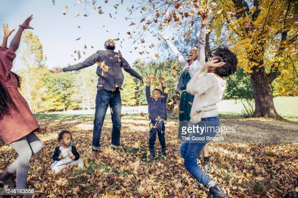 family playing in the autumn leaves - medium group of people stock pictures, royalty-free photos & images