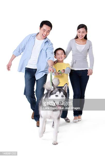 Family playing with a Husky dog