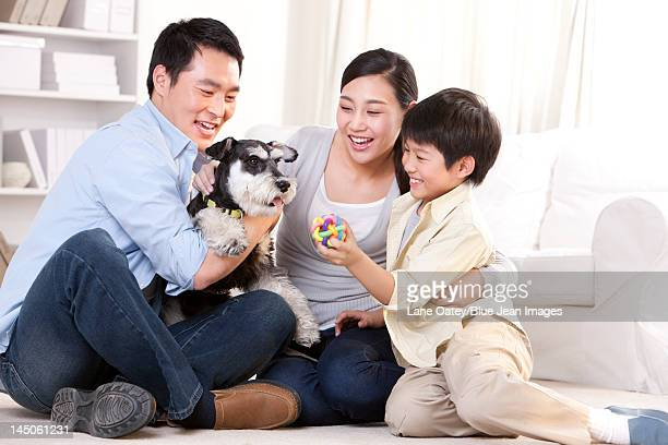 Family playing with a pet Schnauzer