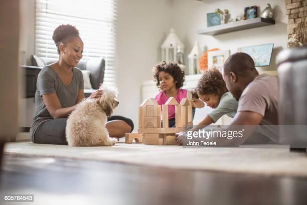 family playing with building blocks in living room - grupo mediano de animales - fotografias e filmes do acervo
