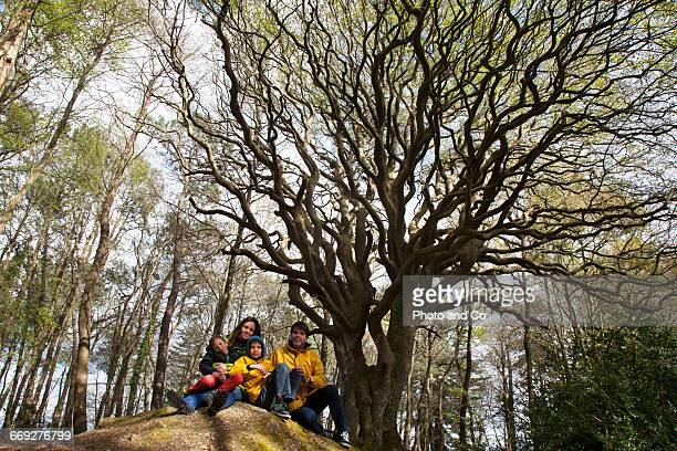 Family Portrait In Front of a Old Beech Tree