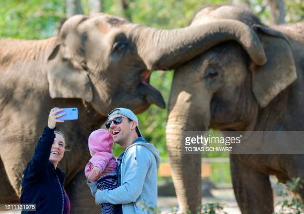 Family poses for a selfie in front of elephants on April 28, 2020 in Berlin's Zoo as it partially reopens for the public amid the novel coronavirus...