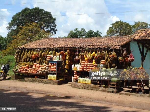 Family Production Of Vegetables, Para State, Brazil