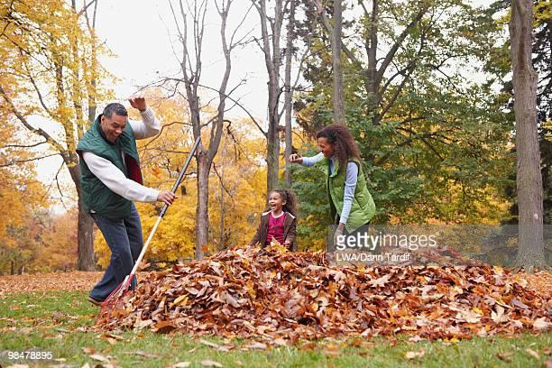 family raking autumn leaves - mom flirting 個照片及圖片檔