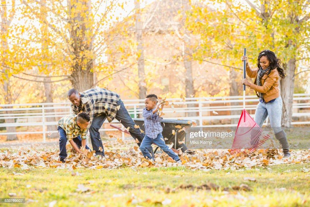 Family raking autumn leaves together : Foto stock