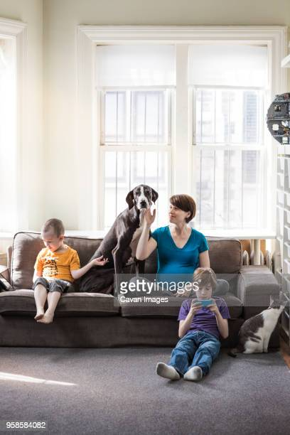 family relaxing at home - canine stock pictures, royalty-free photos & images