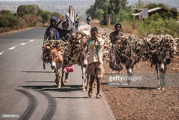 Family returns home after collecting firewood on the mountains around Addis Ababa. Ethiopia, March 21, 2012. © Antonio Ciufo