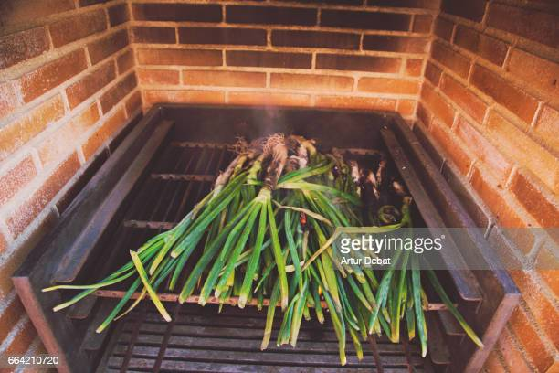 Family reunion on sunday enjoying a typical calçotada in Catalonia, cooking calçots (scallions), a spring onions vegetable grilled on the garden barbecue eaten with romesco sauce that gives a very good taste.