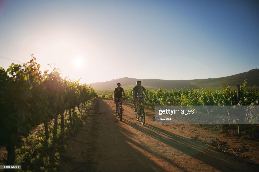 Family ride through the vineyards : Stock Photo