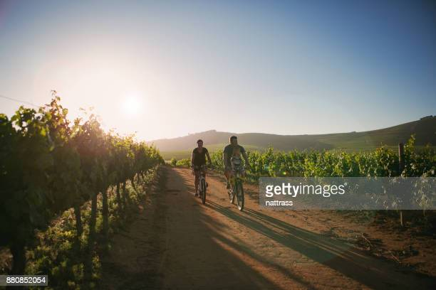 Family ride through the vineyards