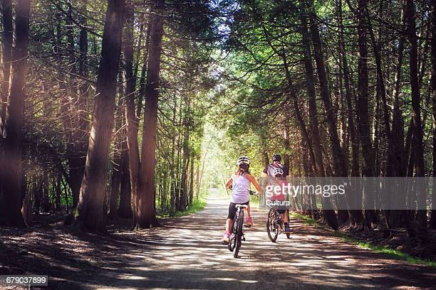 Family riding bicycles through forest, rear view