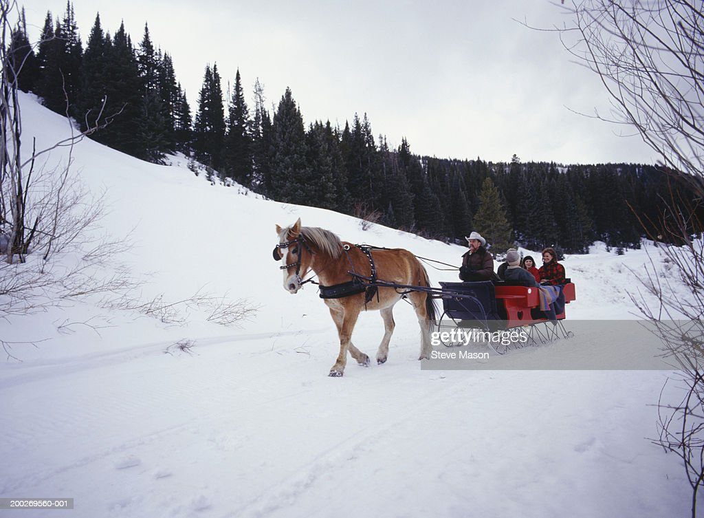 Family riding in sleigh on snow covered road : Stock Photo