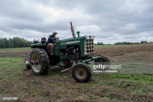 A family run organic farm brings in the potato harvest on September 20 2018 in rural Aroostook County in northern Maine Organic farmers use soil...