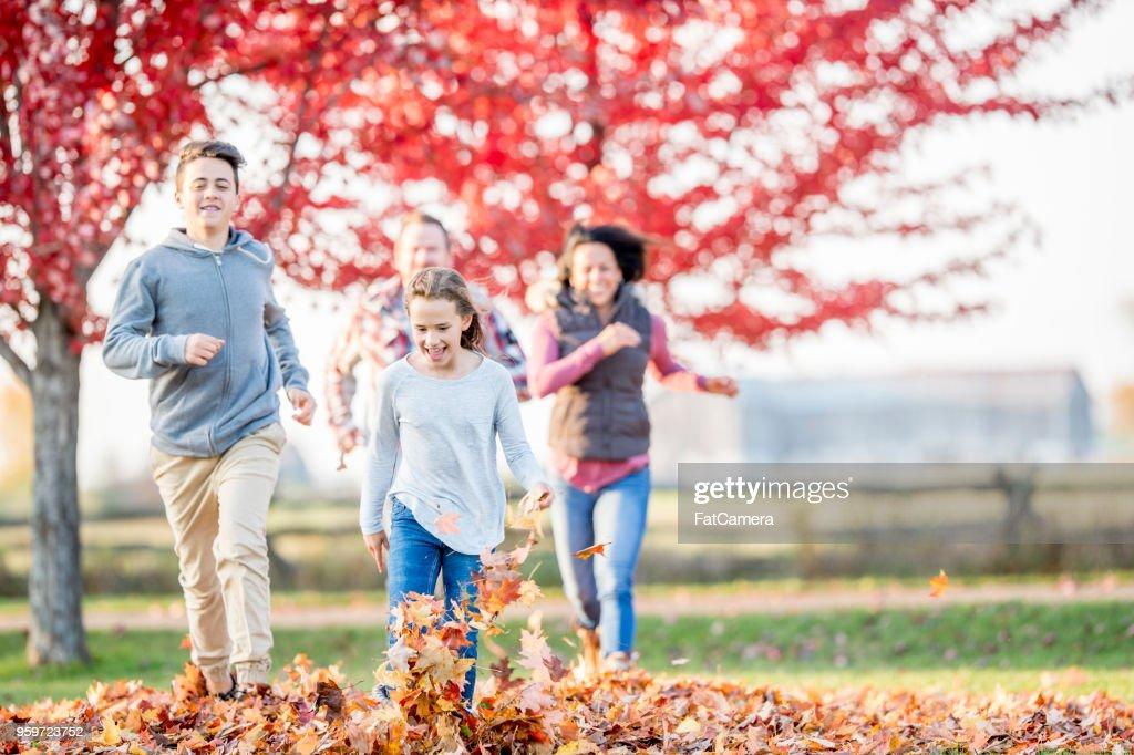 Familie laufen zusammen in einem Park : Stock-Foto
