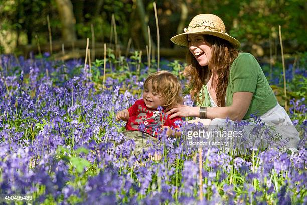 Family Scene amongst a bluebell carpet in Banstead Woods near Chipstead, Surrey. Mother and toddler or child