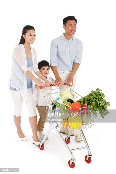 Family shopping with shopping cart