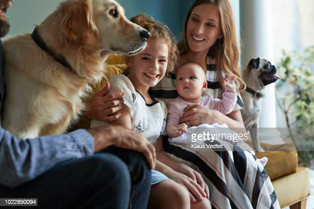 family sitting together in sofa with their dogs - hygge stock pictures, royalty-free photos & images