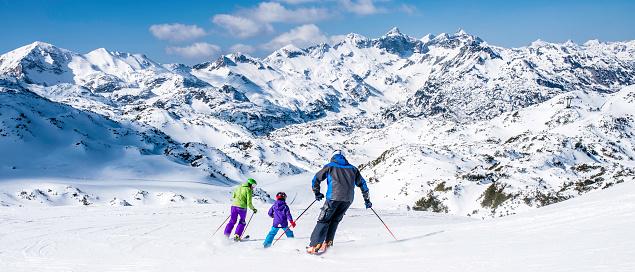 Family skiing 619088040