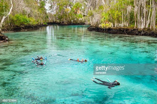 Family Snorkeling at Spring in Crystal River Florida USA