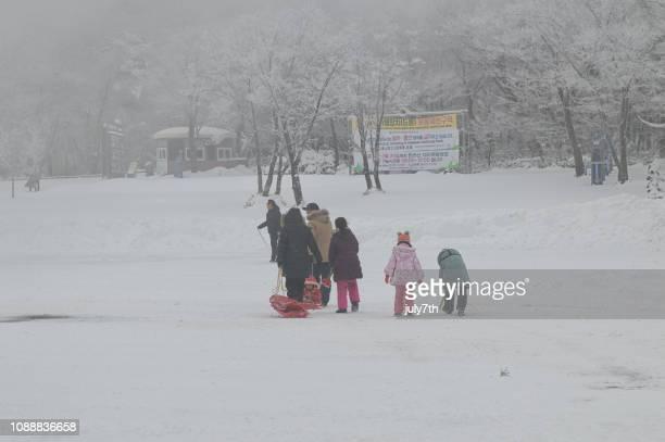 family snow sledding - hallasan stock photos and pictures