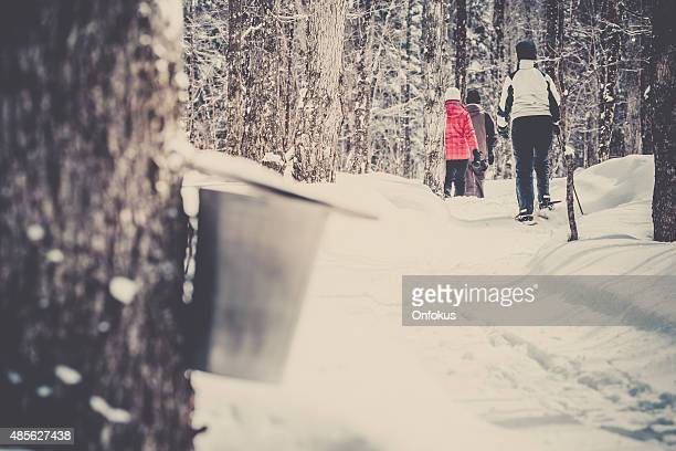 Family Snowshoeing in Winter Forest