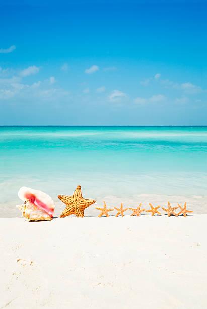 Family Summer Beach Vacation--Seashell, Starfish, Sand, Aqua Caribbean Sea