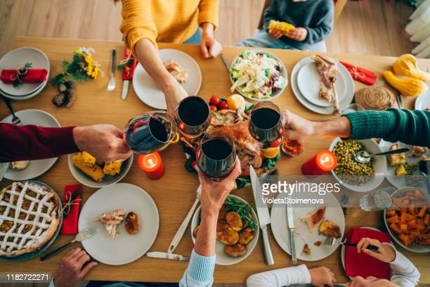 family toast. - thanksgiving plate of food stock pictures, royalty-free photos & images
