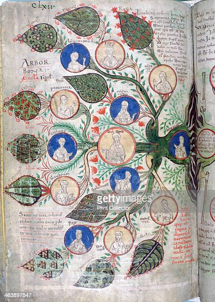 Family tree a page from Liber Floridus 12th century Liber Floridus was an encyclopedia compiled by Lambert Canon of St Omer between 1095 and 1120...