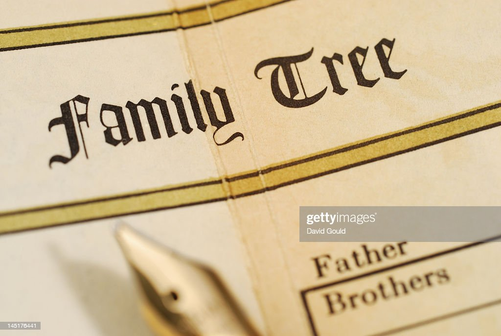 Family tree record in a family bible : Stock Photo