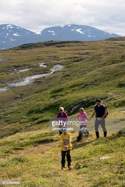 family trekking in meadow - norrbotten province stock photos and pictures