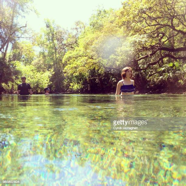 family wading in freshwater spring - freshwater stock pictures, royalty-free photos & images
