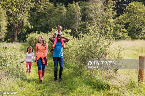 family walk through woodland - woodland stock pictures, royalty-free photos & images