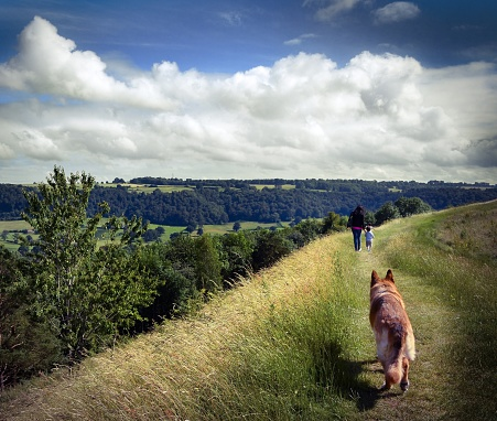 Family walk with the dog in the British countryside. - gettyimageskorea