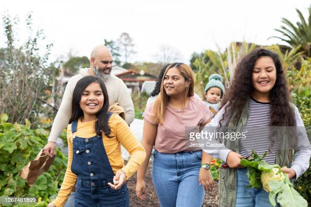 a family walking in a vegetable garden with homegrown produce - new zealand stock pictures, royalty-free photos & images