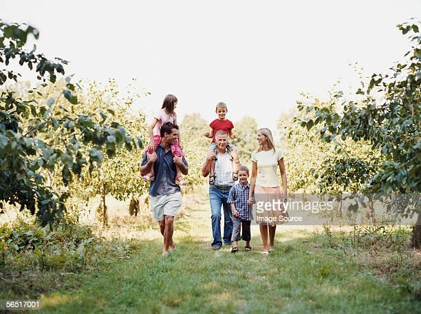 family walking in an orchard - orchard stockfoto's en -beelden