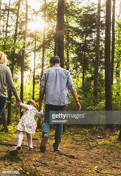 family walking in forest - ヘッセン州 ストックフォトと画像