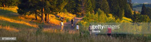Familie wandelen in de zomer natuur