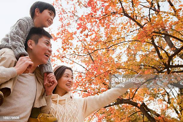 family walking through the park in the autumn, little boy sitting on his fathers shoulders  - in the park day 3 imagens e fotografias de stock