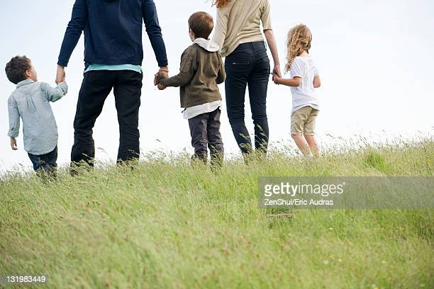 Family walking together in field, rear view
