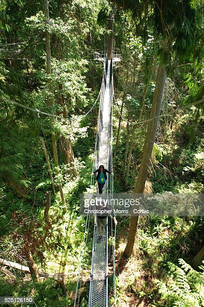 Family walks across the Greenheart Canopy Walkway at UBC Botanical Garden on the campus of the University of British Columbia. The elevated walkway...